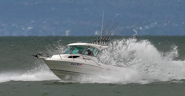 Gala Fishing Comp Saturday 13th November